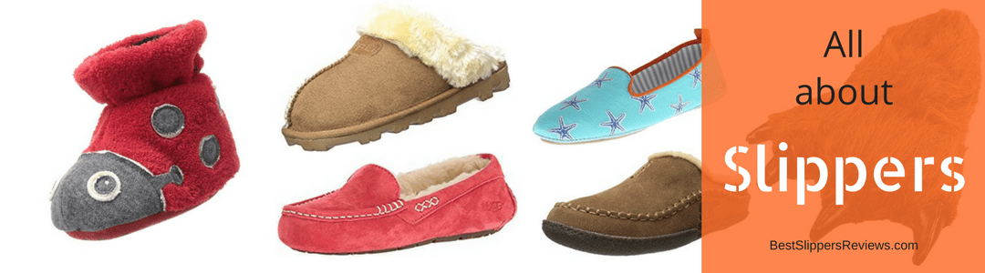 Best Slippers Reviews