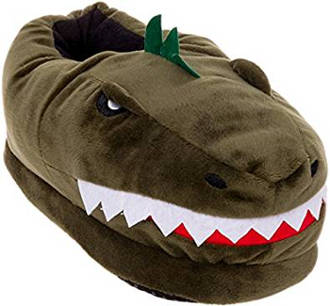 Dinosaur T-Rex slipper for dinosaur lovers